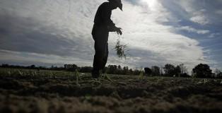 0413-farm-worker-immigration.jpg_full_600