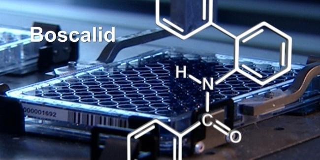 BASF discovers next generation fungicide: Xemium