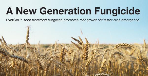 Bayer Crop Science: EverGol