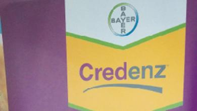 Bayer CropScience announces new soybean brand