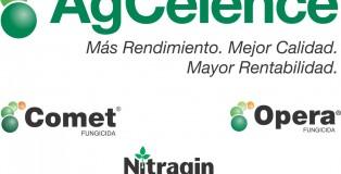 agcelence1